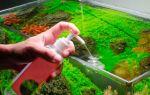 Оздоровление аквариумных растений с помощью удобрений