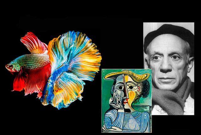 Пабло Пикассо и сиамские петушки