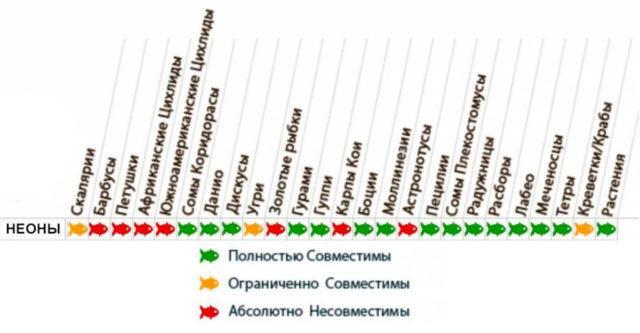 Таблица совместимости для неонов