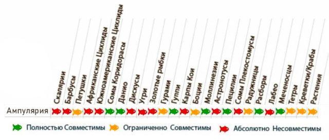 Таблица совместимости ампулярий с аквариумными рыбками