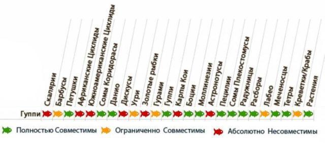 Таблица совместимости гуппи