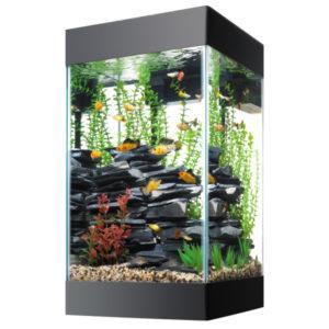 Высокий аквариум
