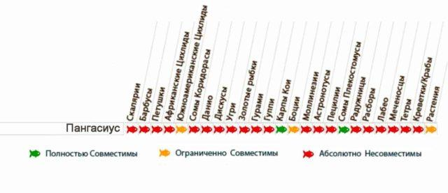 Таблица совместимости пангасиусов