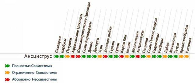 Таблица-совместимости-анциструсов